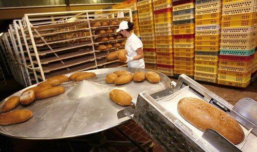 работа в Чехии на хлебозаводах