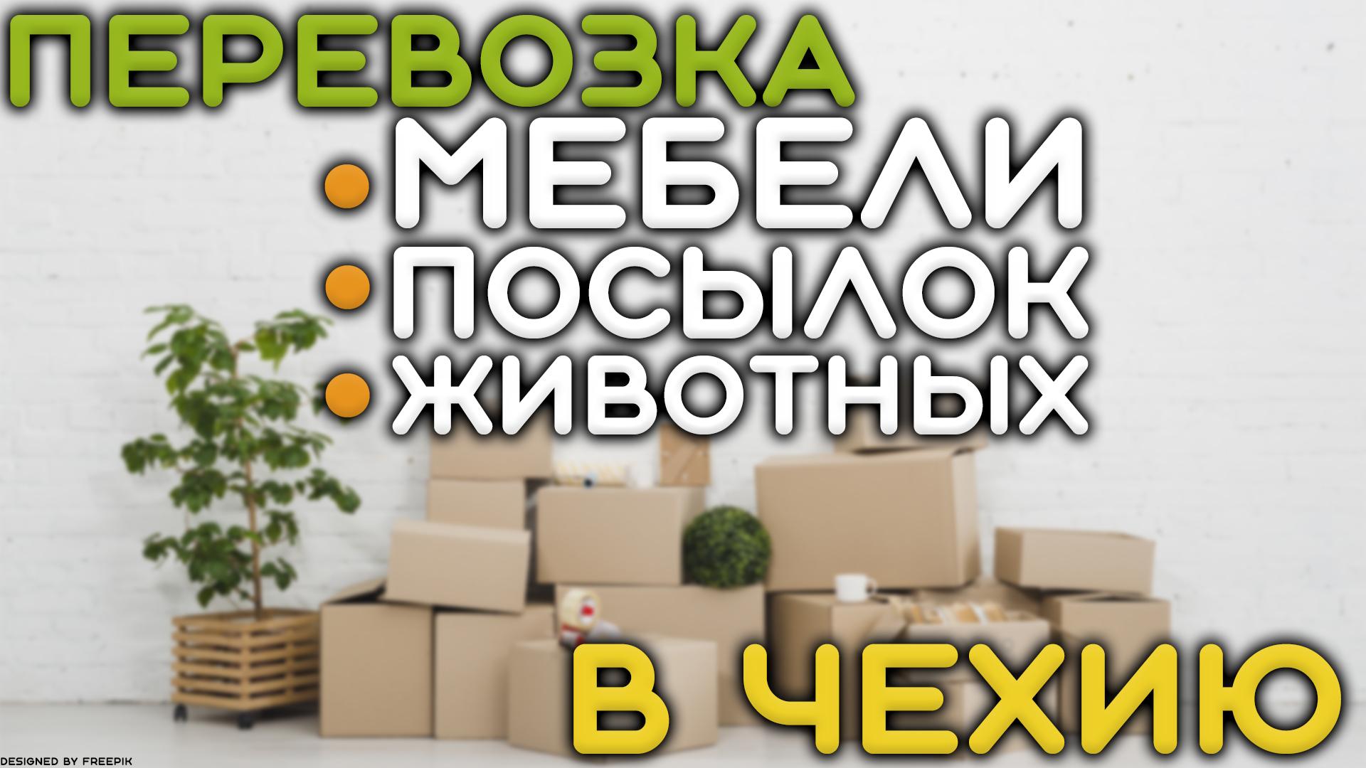 Перевозка мебели, документов, животных в Чехию